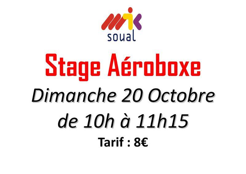 Stage Aéroboxe