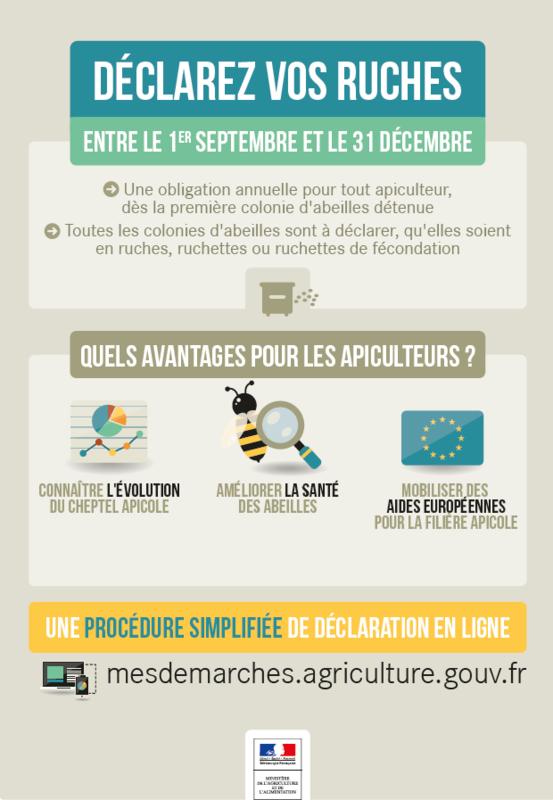 Déclaration ruches