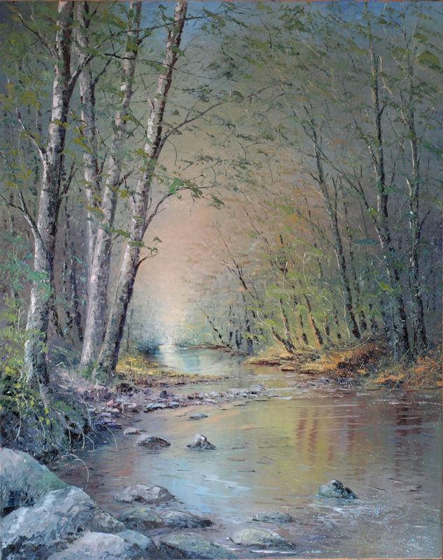 Lumière matinale sur le ruisseau